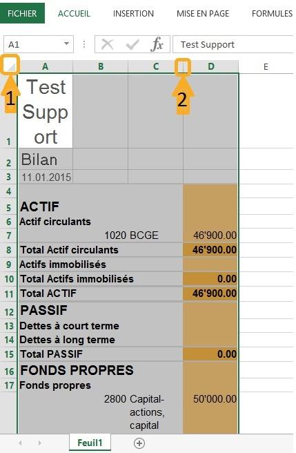 Coller le bilan (CTRL+V) dans Excel