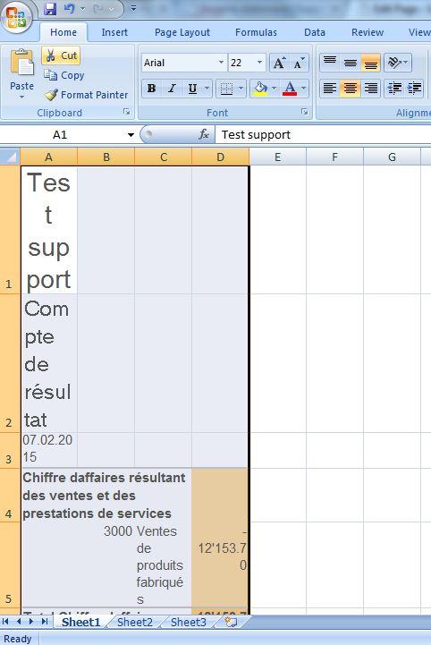 Collez votre compte de résultat dans Excel